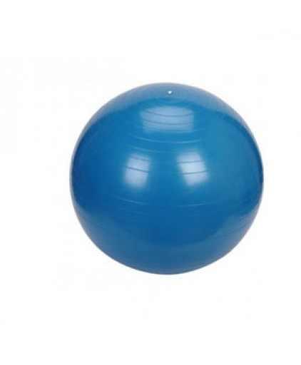 ANTI BURST PRO-GRADE GYM BALL 65CM (2 Colour: Blue & Pink )