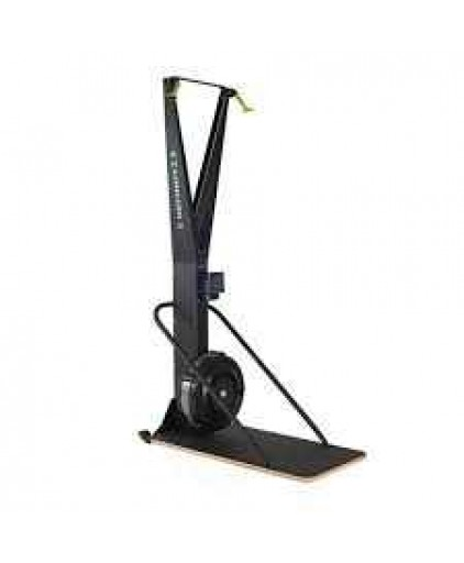 BRAND NEW CONCEPT 2 SKI ERG WITH FLOOR STAND